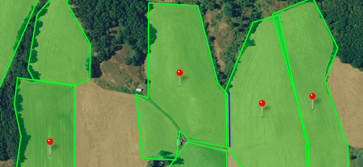 Screenshot of highlighted fields